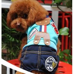Джинсы и толстовка для собаки