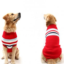 Jumper for dog