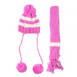 Шапка и шарф для собаки